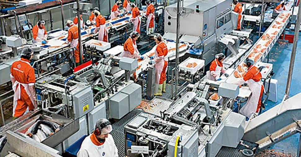 food processing quality control